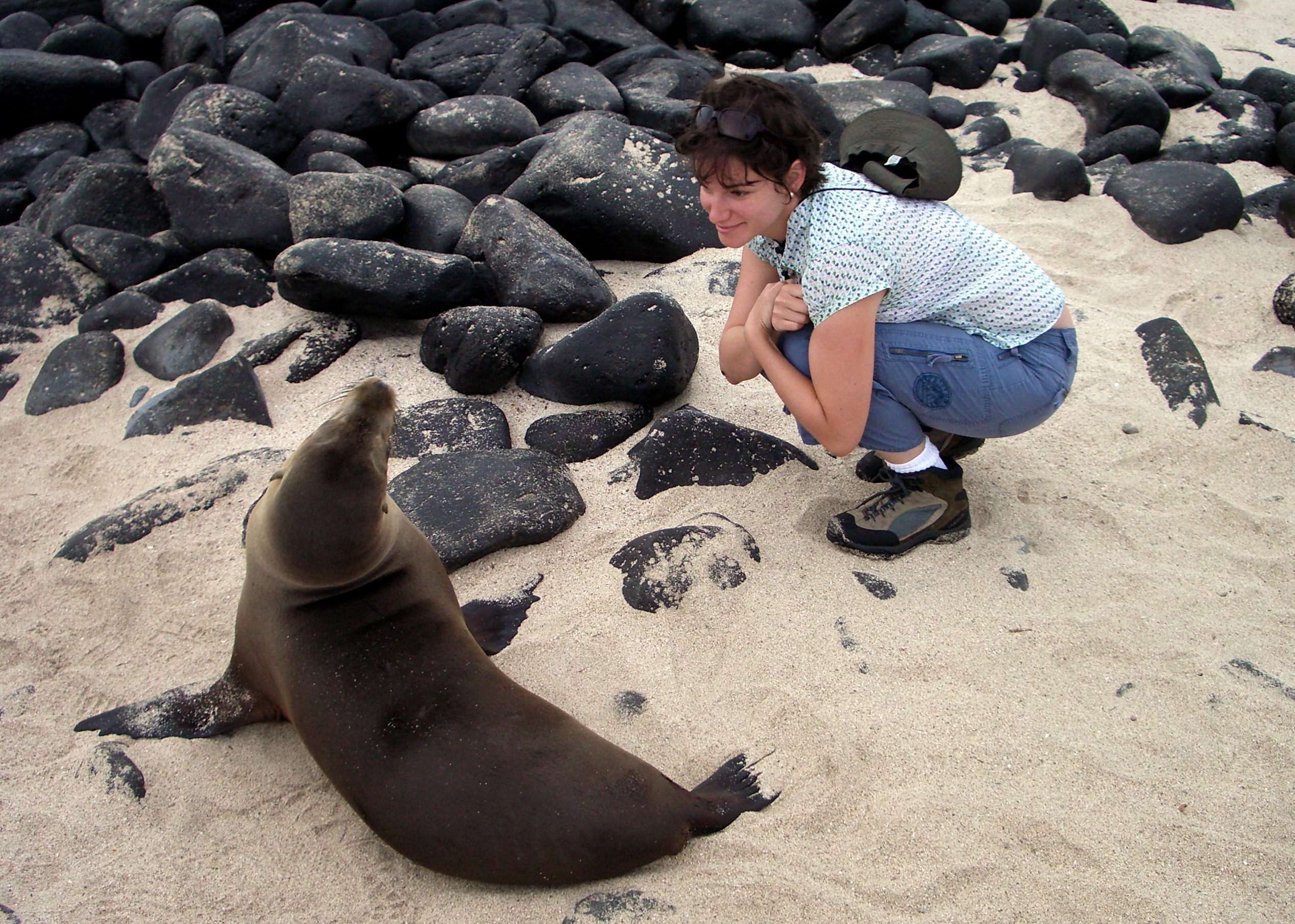 Dr. Meg Marino in the Galapagos Islands with a sea lion.